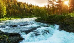 mountain river manali beas view