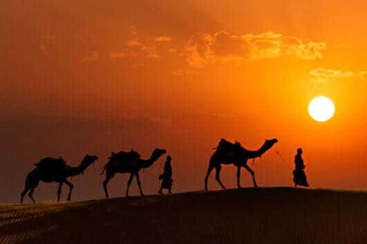 complete rajasthan desert tour