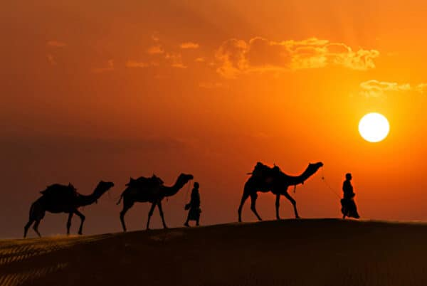 complete rajasthan desert tour